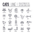thin line breed cats icons set cute vector image vector image