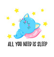 cute cartoon with a sleeping kitten vector image