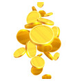 gold coins falling vector image