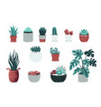 home plants cartoon decorative pots with flowers vector image vector image