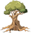 majestic tree vector image vector image