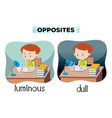 opposites luminous and dull vector image vector image