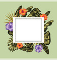 square frame with flowers plants decoration vector image vector image