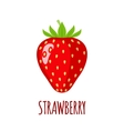 Strawberry icon in flat style on white background vector image