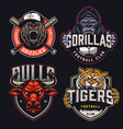vintage colorful sports clubs logotypes vector image