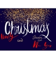Wish You a Merry Christmas and Happy New Year vector image