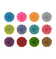 colorful fluffy pompom set isolated on white vector image