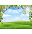 grapes and rural landscape vector image vector image