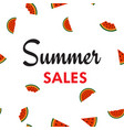 summer sales background with watermelon parts vector image vector image