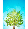 summer tree and glowing sky vector image vector image