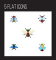 flat icon fly set of dung buzz bluebottle and vector image