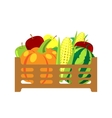 Fruits and vegetables in wicker basket vector image vector image