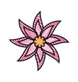 beautiful flower ornament vector image vector image