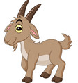 cartoon goat isolated on white background vector image vector image