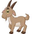 cartoon goat isolated on white background vector image