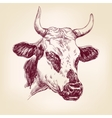 cow hand drawn illustration realistic sketch vector image