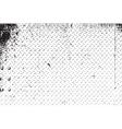 DSC 0012156765 vector image vector image