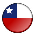 isolated flag button vector image vector image