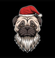 pug dog hat and beard santa christmas vector image