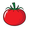 Red tomato vegetable isolated on white vector image