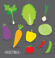 vegetable food cook cartoon vector image vector image