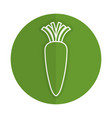 carrot fresh vegetable icon vector image