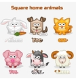cute cartoon square Home animals vector image vector image