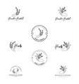 hand herbal logo template vector image vector image