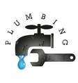 plumbing tools service vector image vector image