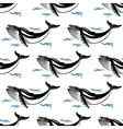 Swimming whale seamless pattern vector image vector image
