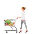 woman pushing shopping cart vector image vector image
