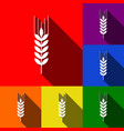 wheat sign spike spica set vector image