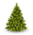 Christmas Tree Pine Isolated on White vector image vector image