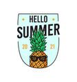 design pineapple in sunglasses vector image