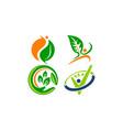 leaf health template set vector image
