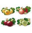 set of ripe gooseberries vector image vector image