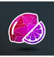 sign Lemon logo unusual stylized slice vector image vector image