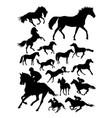 silhouette jockey and horse vector image