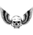 skull and wings in engraving vector image vector image