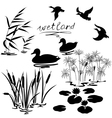 wetland set vector image