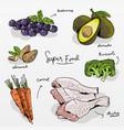 hand drawn fresh food set vector image vector image