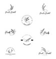 hand herbal logo template vector image