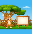 animal tiger beside the empty sign board inside th vector image vector image