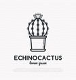 cactus with flower in pot thin line icon vector image vector image