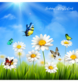 Flower With Butterfly Background vector image vector image