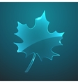 glass maple leaf icon Eps10 vector image vector image
