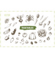 hand drawn vegetables set vintage icons vector image vector image