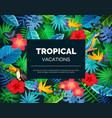 tropical exotic background vector image vector image