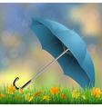 umbrella grass fallen leaves vector image vector image
