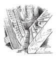 wooden steps vintage vector image vector image